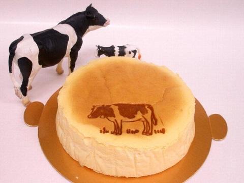 チーズケーキング エフのフロマージュスフレ